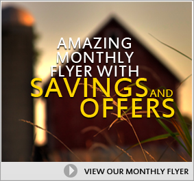 Amazing Monthly Flyer with Savings and Offers