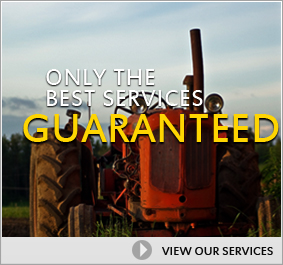 Only the Best Services Guaranteed, View Our Services